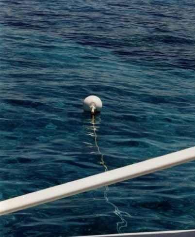 Self Cleaning Buoy floating above reef.
